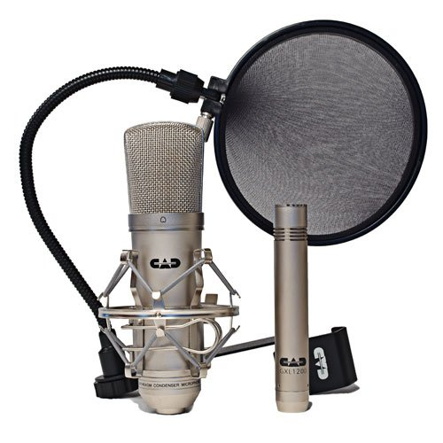 Best Cheap Microphone For Rapping