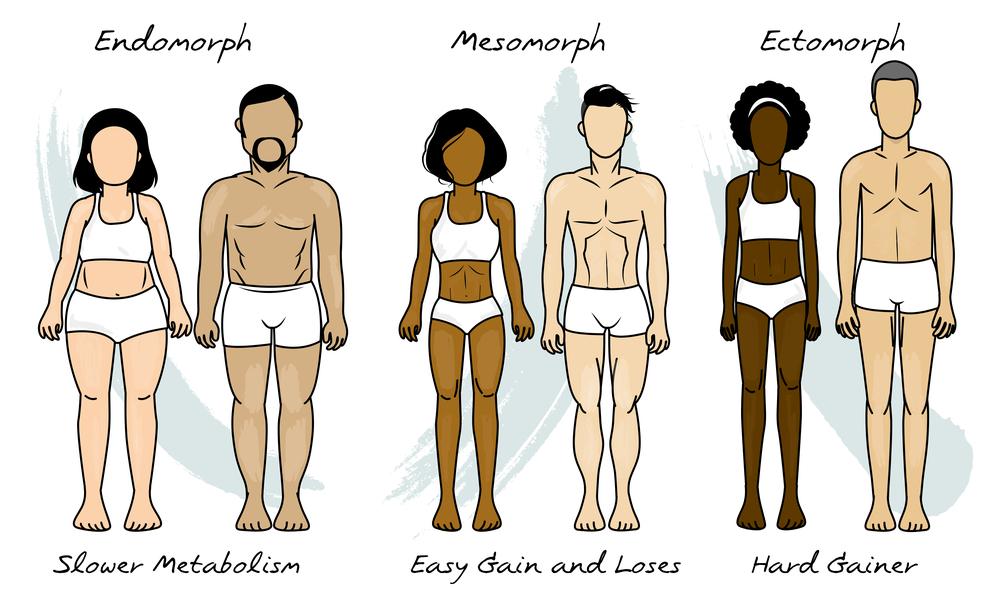 Endomorphs